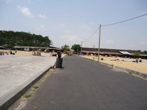 Padang Gabah