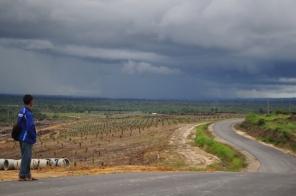 Berau, Kalimantan Timur
