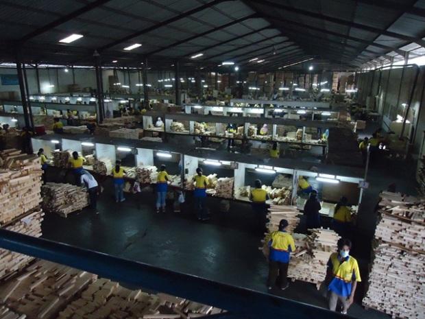 pabrik kayu