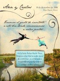 wedding_invitation_by_teobalin